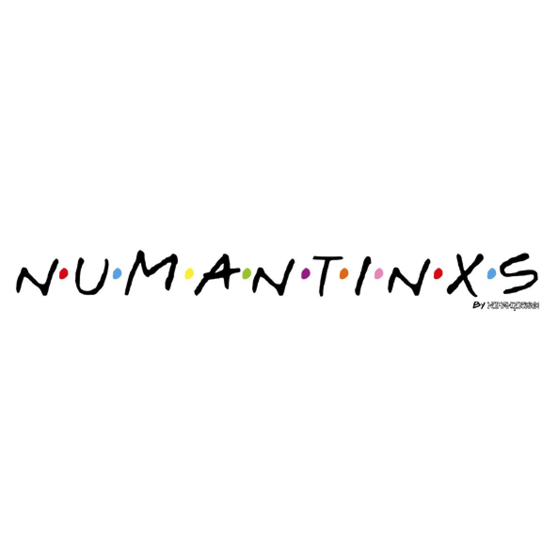 Friends Numantinos